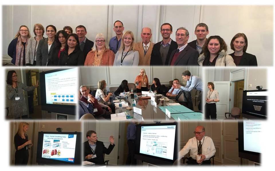 Nano workshop 2015 collage pic2
