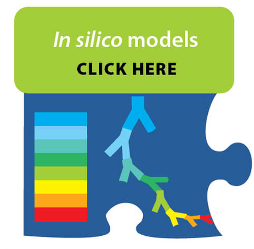In silico Models